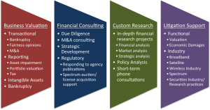 Business-Valuation,Financial-Consulting,Custom-Research,Litigation-Support